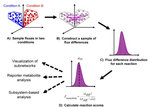 sampling and scoring analysis to determine intracellular flux changes