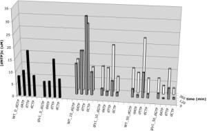 Threonine aldolase contributes to normal dNTP metabolism