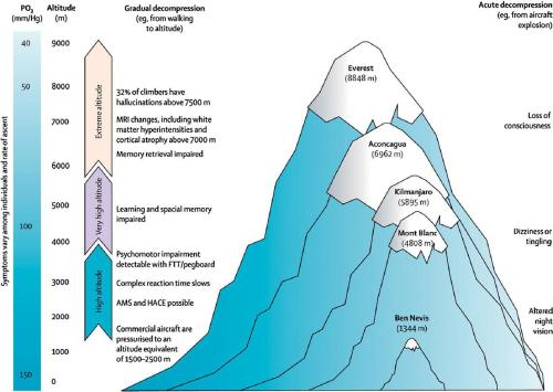 Neurological consequences of increasing altitude