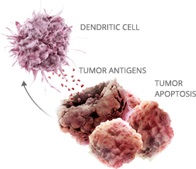 tumor-microenv-sm Disrupting antigen detection