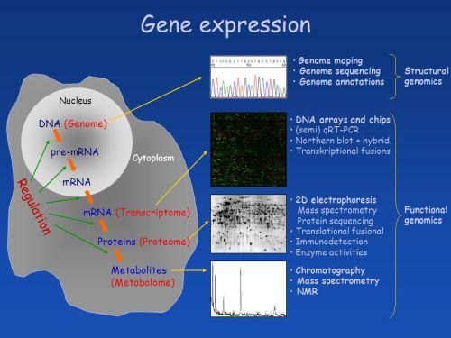 Struc-Func genomics