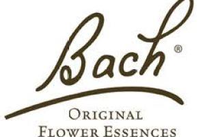 Pharmacie du 15e corps à Toulon, parapharmacie, fleurs de Bach