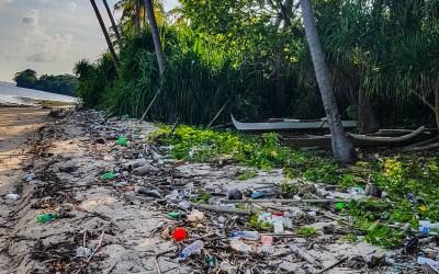 Covid's environmental impact