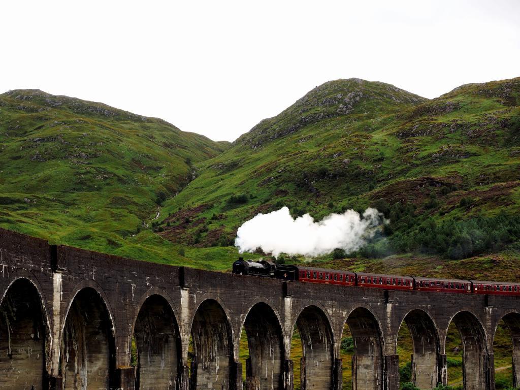 Social Media Steam Train