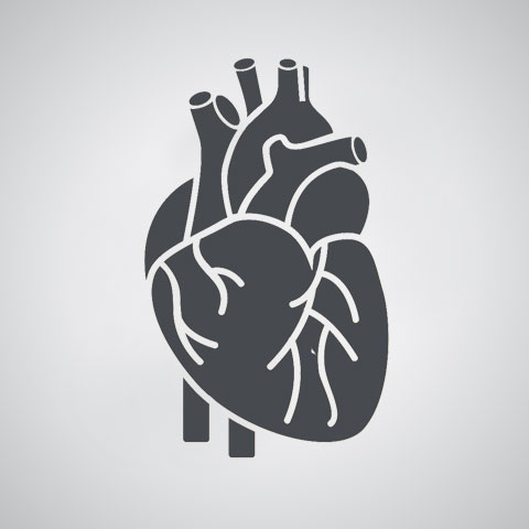 Cardiologie et maladies cardiovasculaires