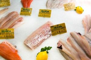stockvault-seafood-on-ice136104