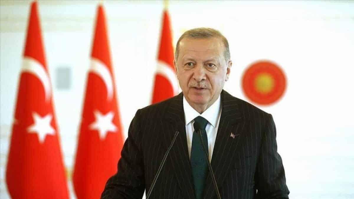 Erdogan scaled