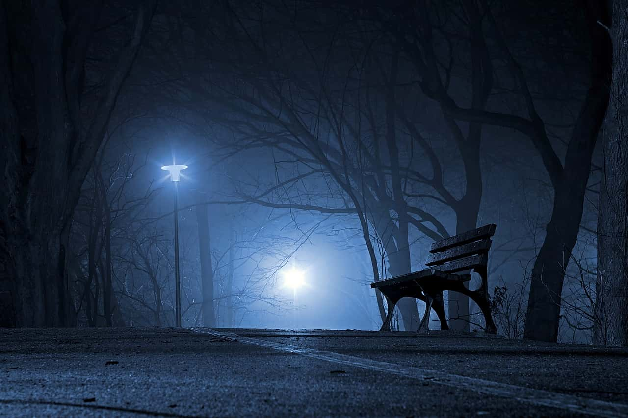Foggy Night Bench