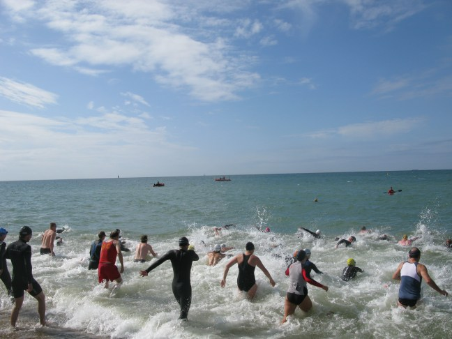 aquathlon-swim1.jpg