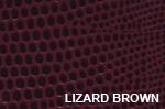 Lizard Brown