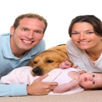 Carpet and Upholstery Cleaning is Best Left to the Pros