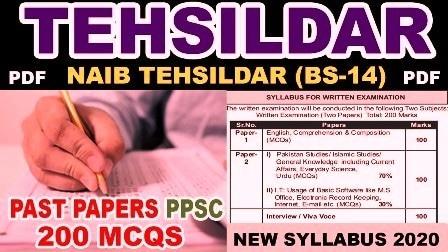 PPSC Tehsildar Past Papers
