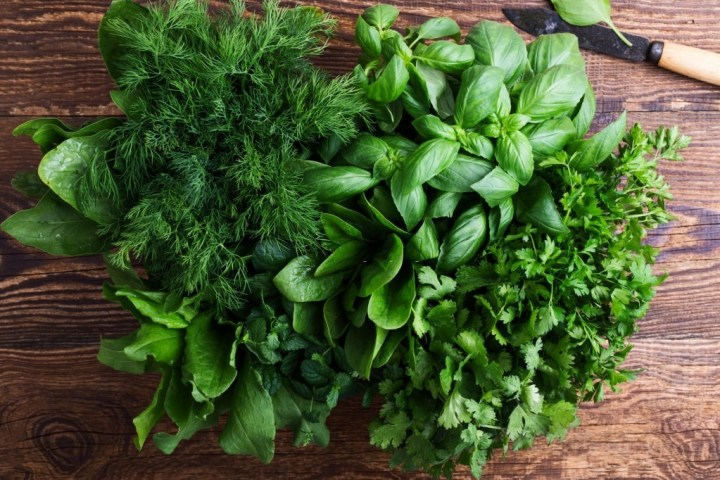 Top 10 Amazing Herbs That May Help You Lose Weight!