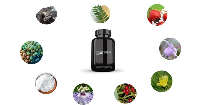 Rise Testosterone Booster ingredients