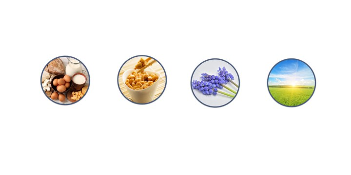 OsteoMD reviews - Ingredients