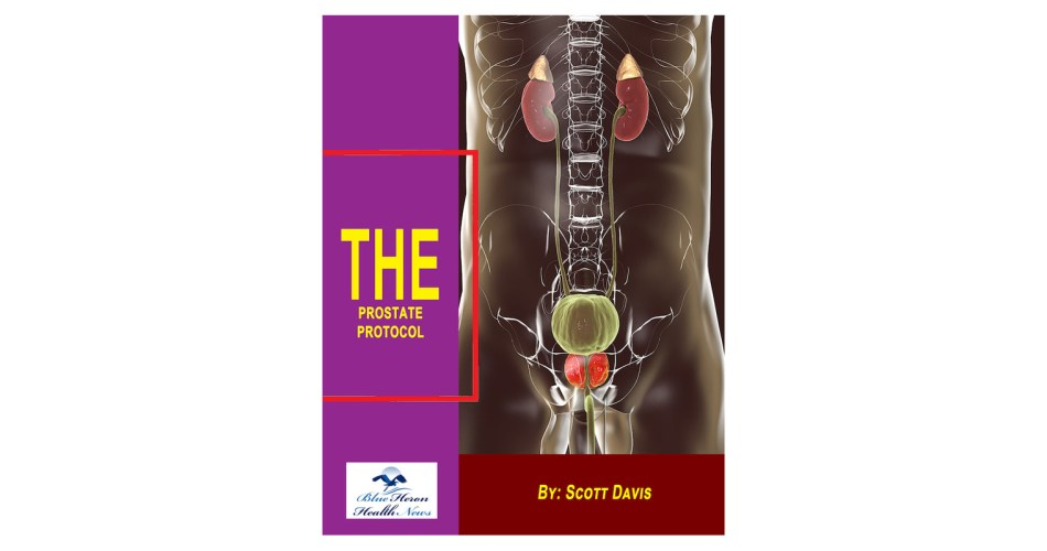 The-Prostate-Protocol-reviews