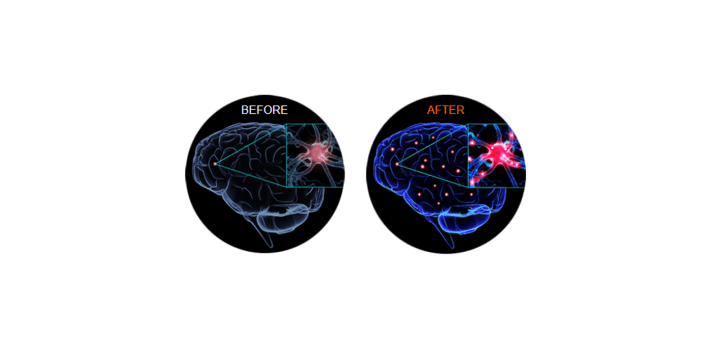 Genbrain results