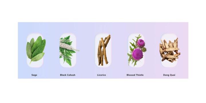 MannaSlim ingredients