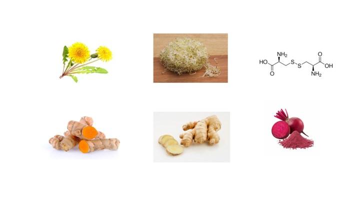 Liver Health Formula Ingredients