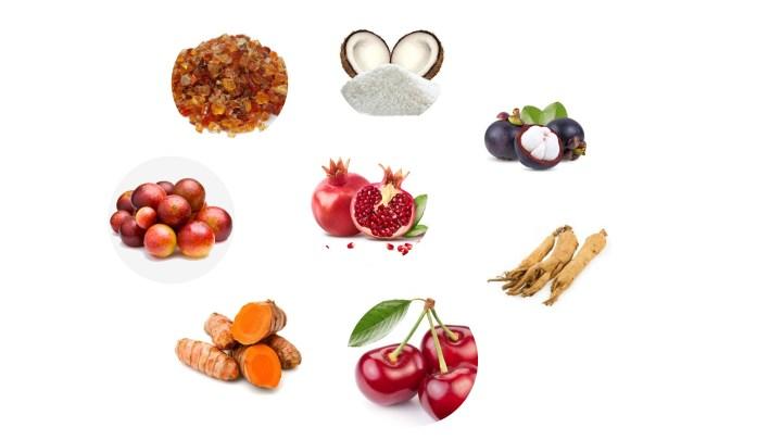 MetaZyne Ingredients