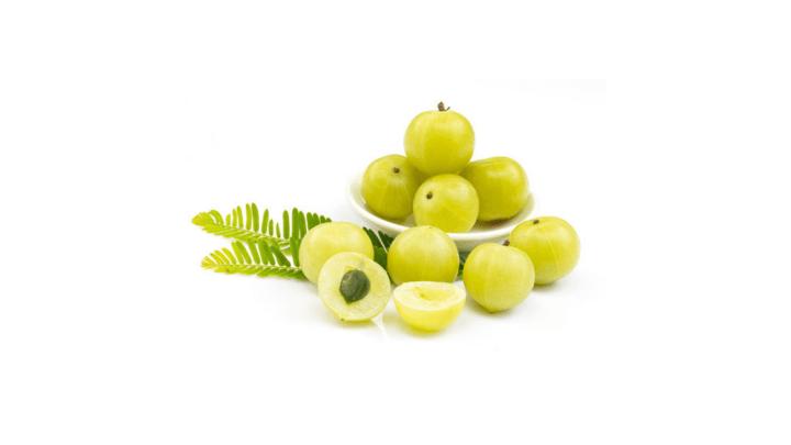 Total Revive Plus Ingredients -Amla or Phyllanthus Emblica