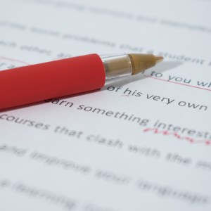 Business level proofreading PhD Voice