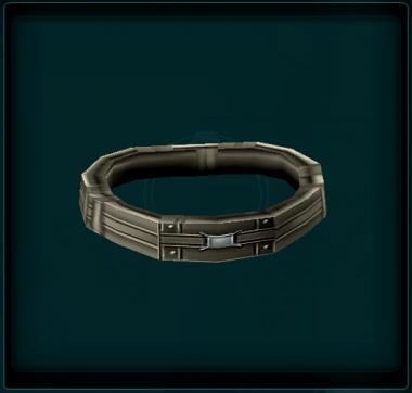 Widebuckle Belt