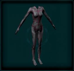 Tactical Skinsuit