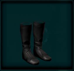 Uniform Boots