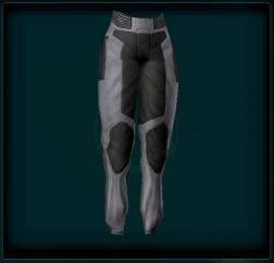 Reinforced Pants