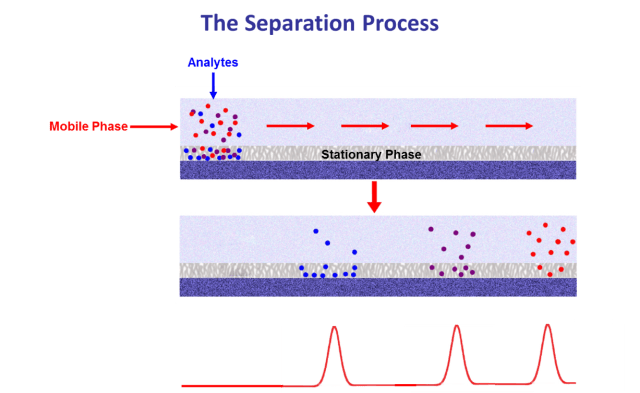 HPLC Separation Process