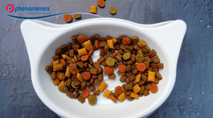 What's Your Pet Truly Eating? Analyzing Vitamins in Pet Food