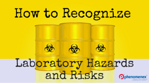Laboratory Hazards and Risks—And How You Can Avoid Them