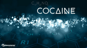 Sugar Intake and Cocaine Addiction—Are They Equally Dangerous?