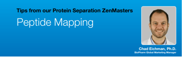 peptide mapping