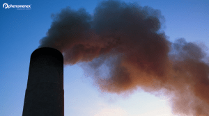 Sulfur Dioxide, Acid Rain, and How Gas Chromatography is Here To Help