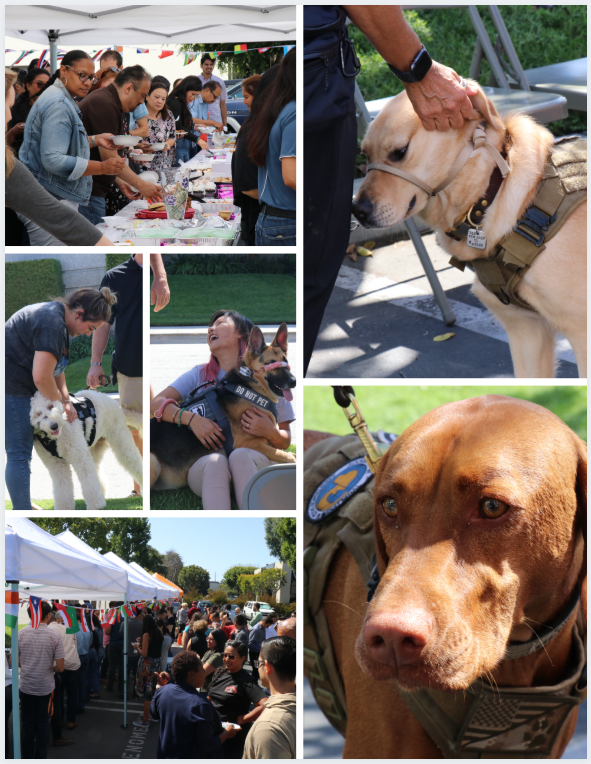 Next Step Service Dogs event with Phenomenex and Dogtopia