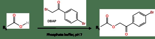 Reactivos derivatizantes con tampón fosfato
