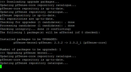 pfsense-update_5