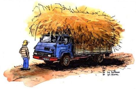 Vieux camion transportant une grande quantité de cannes à sucre.