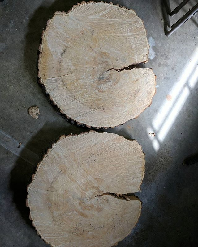 I have some fun ideas planned for these two pieces.#maple #woodworking #wood #makeshit  #diy