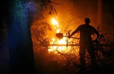 Добровольцы в огне