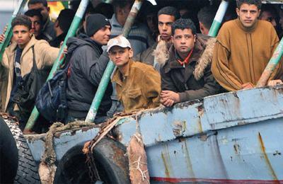 Охота на мигрантов станет социально ориентированной