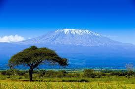 «Килиманджаро. Я могу!»: люди с синдромом Дауна взойдут на Килиманджаро