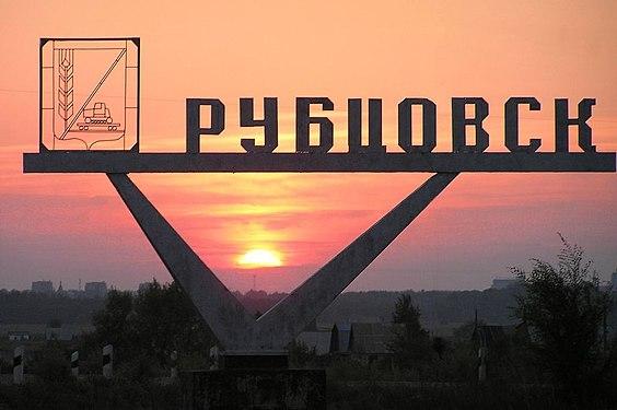 Венчурная филантропия на примере города Рубцовска