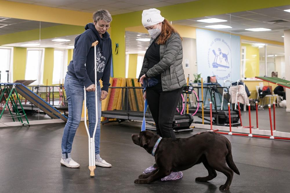В Екатеринбурге прошло тестирование собак-терапевтов  для участия в проекте по канистерапии