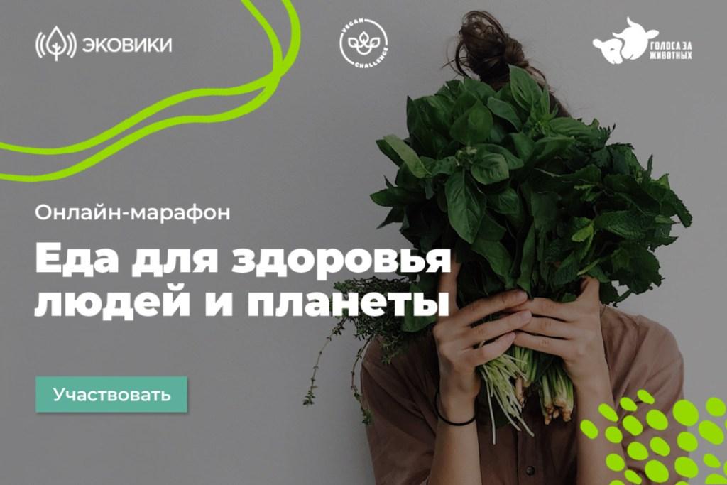 Россияне узнают, как питаться без вреда для окружающей среды