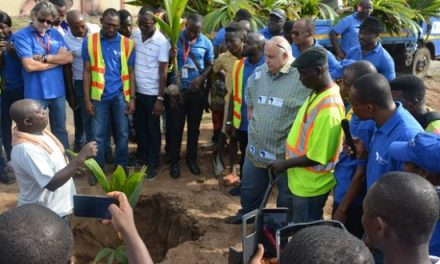 Meridian Ports Services plants trees on Tema Beach Rd