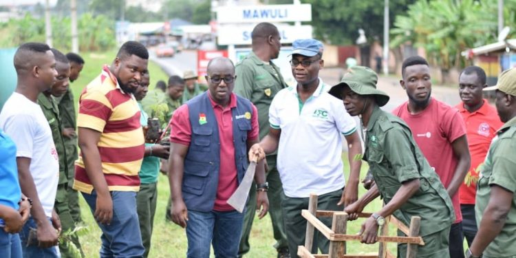Rotary Club of Ho, Forestry Commission plant 950 trees
