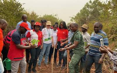 Vodafone marks Valentine Day with tree-planting